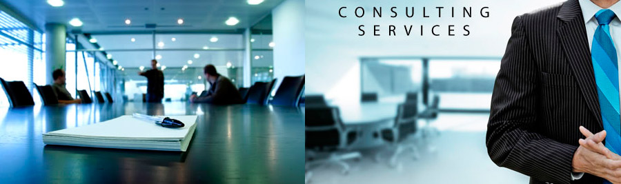 Consultancy Service Company : Security consulting executive protection firm